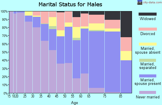 Baraga County marital status for males