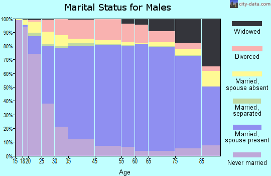 Pershing County marital status for males