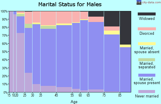 Luna County marital status for males