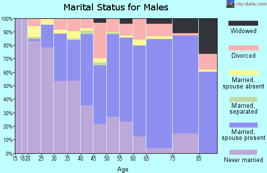 Codington County marital status for males