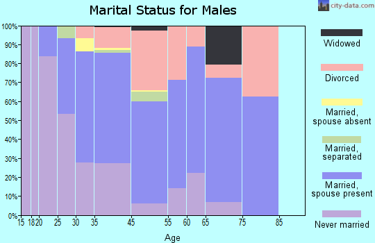 Anoka County marital status for males