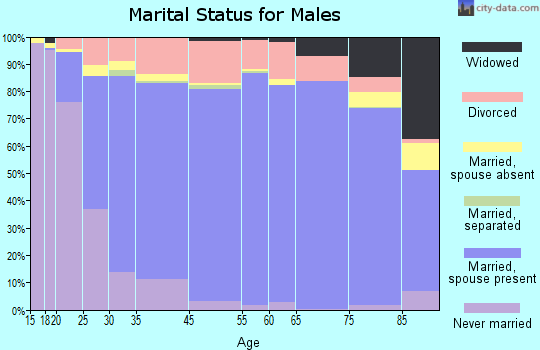 York County marital status for males