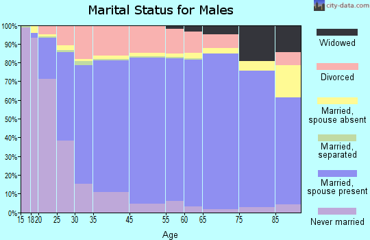 McKinley County marital status for males