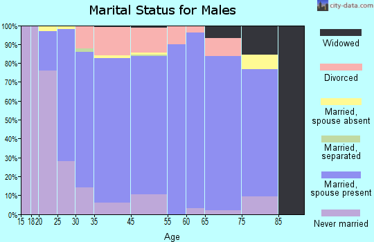 Dolores County marital status for males