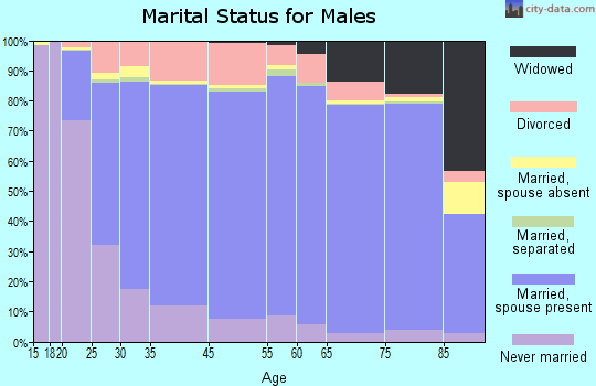 Chippewa County marital status for males
