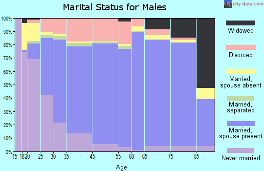 Salem County marital status for males