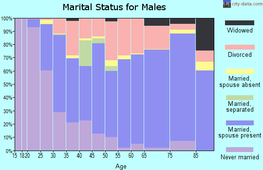 Dillon County marital status for males