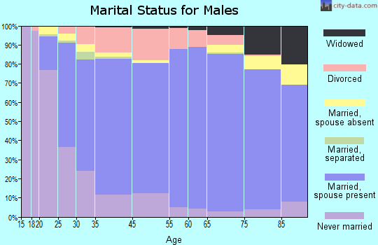Somerset County marital status for males