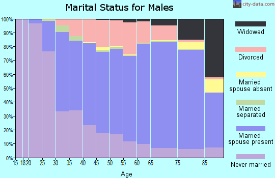 Dorchester County marital status for males