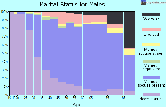 Sussex County marital status for males