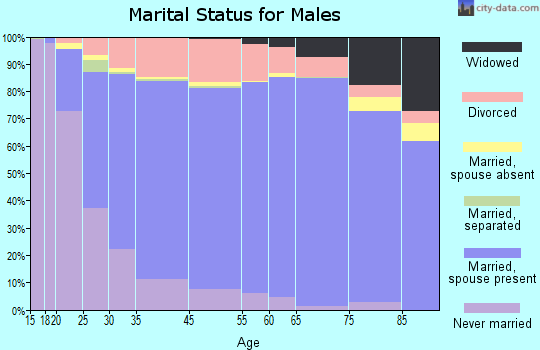 Darke County marital status for males