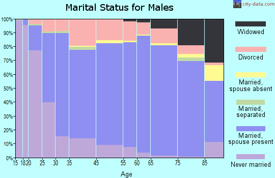 Gadsden County marital status for males