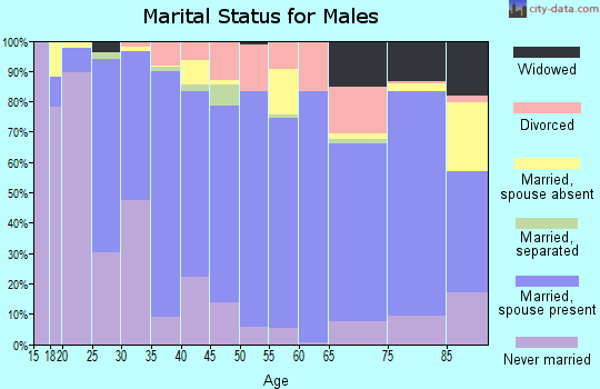 Bedford County marital status for males