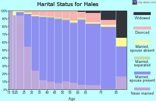 El Paso County marital status for males