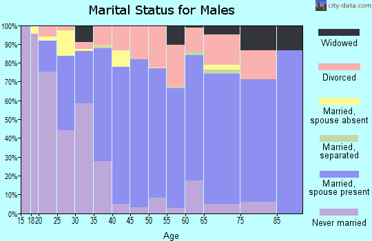 Box Elder County marital status for males