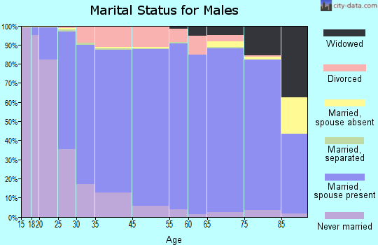 Sevier County marital status for males