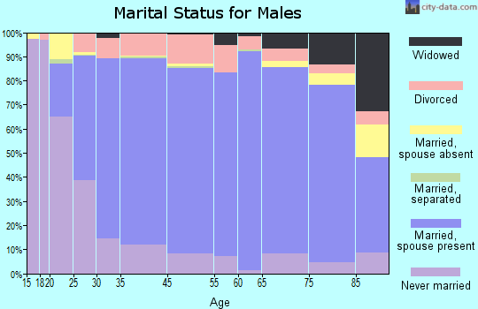 Lewis County marital status for males
