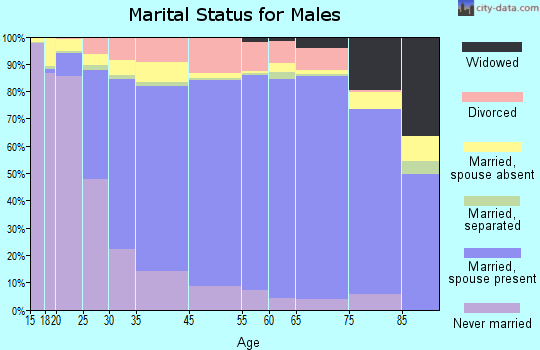 Christian County marital status for males