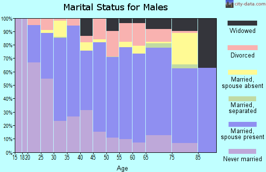 Dickson County marital status for males