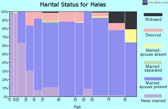 Brewster County marital status for males