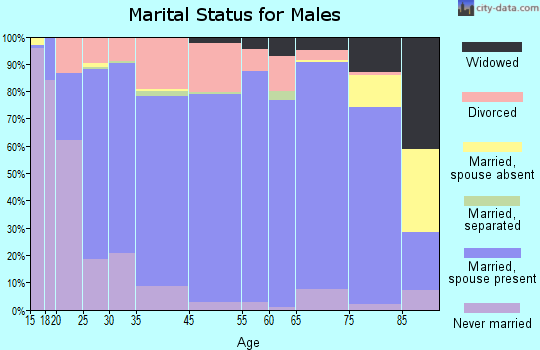 Gem County marital status for males