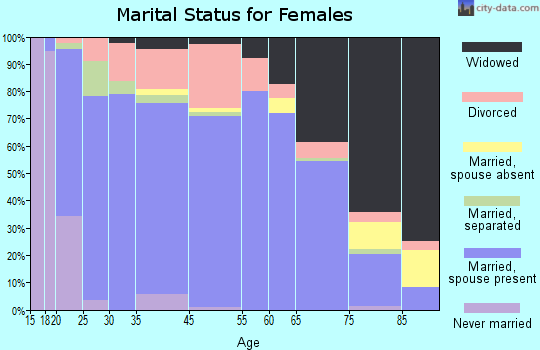 Dyer County marital status for females