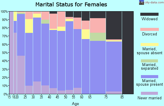 Dickenson County marital status for females