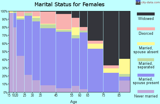 Dinwiddie County marital status for females