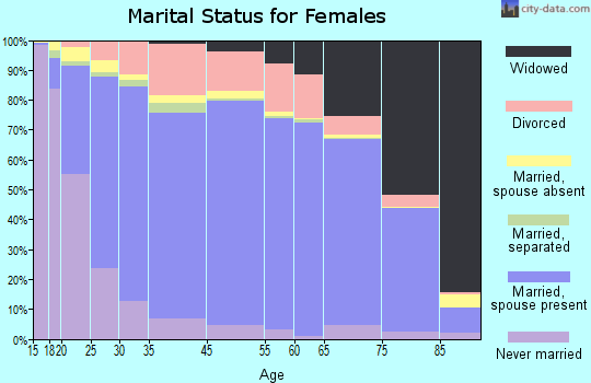 Indian River County marital status for females