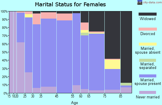 Halifax County marital status for females