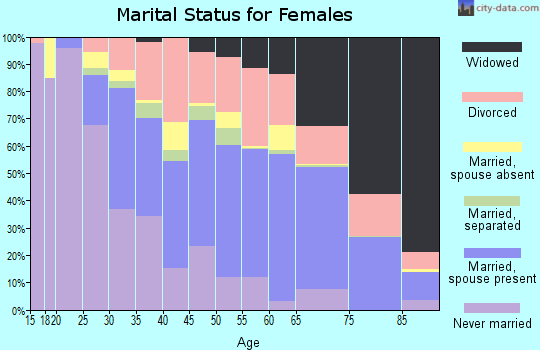 McMinn County marital status for females