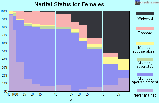 Otsego County marital status for females