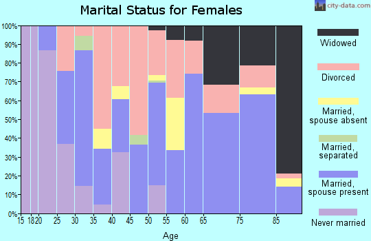 Magoffin County marital status for females