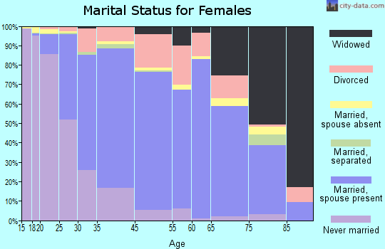 Big Stone County marital status for females