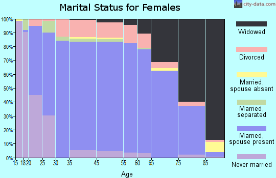 Hillsborough County marital status for females