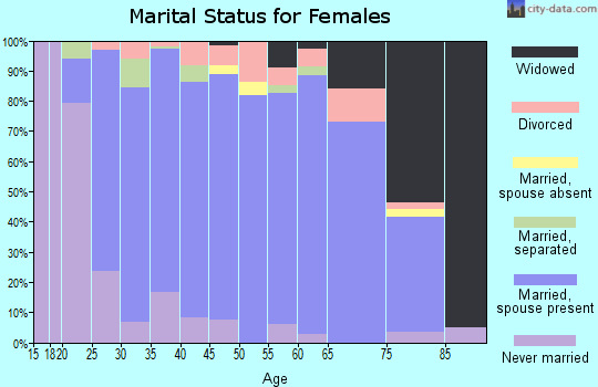 Brunswick County marital status for females