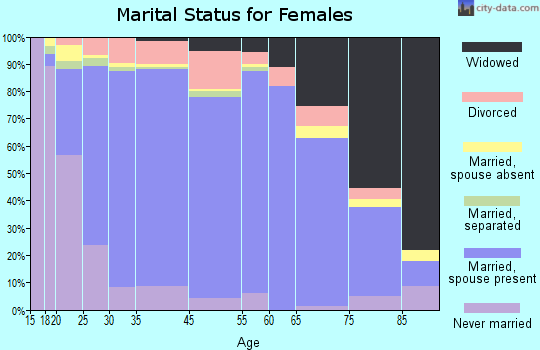 Somerset County marital status for females