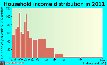 Saginaw Township South household income distribution