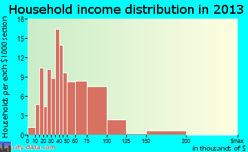 Clearwater household income distribution