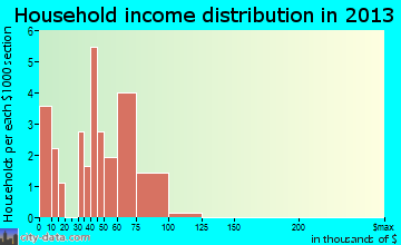 Magnolia household income distribution