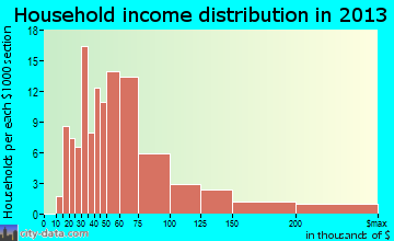 Nisswa household income distribution