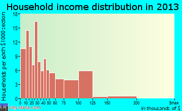 Rush City household income distribution