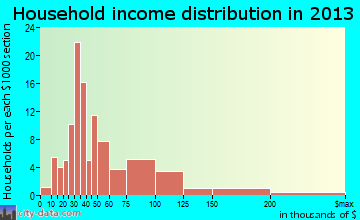 Village of Four Seasons household income distribution