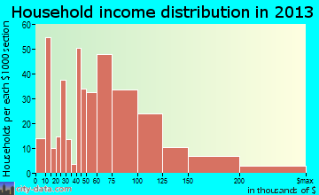 Dunellen household income distribution