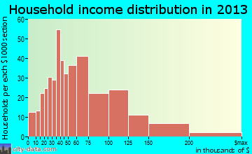 Pitman household income distribution