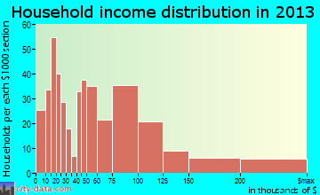 Raritan household income distribution
