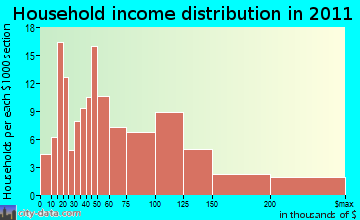 Big Flats Airport household income distribution
