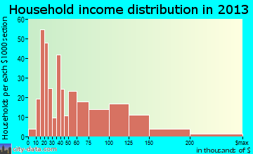 Island Park household income distribution