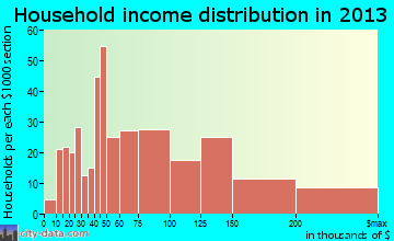 New Hyde Park household income distribution