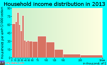 Patchogue household income distribution